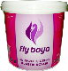 Fly Plastic Interior Paint