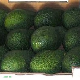 Fresh Avocados from Kenya!!!