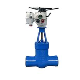 power statation gate valve