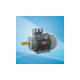 Cast Iron Electric Motors