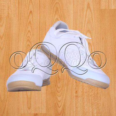 Schmelzer Indoor Shoes