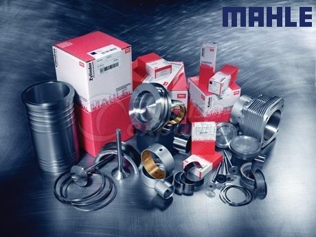 Mahle Parts