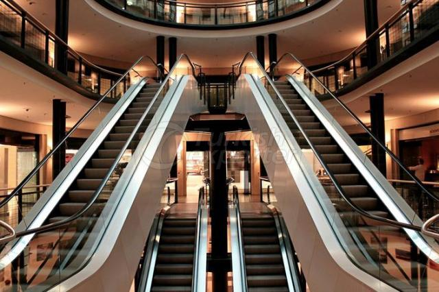 Escalator-Conveyor Belt Systems