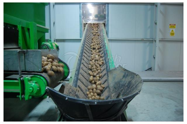 Pomking Potatoes