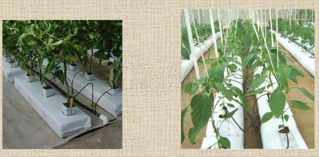 Coco-Pith Grow Bags