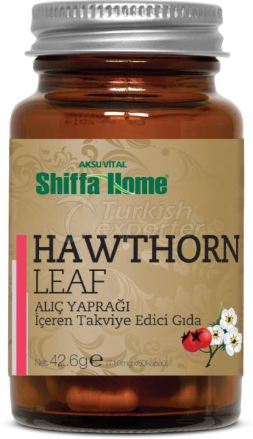 Hawthorn Leaf Capsule