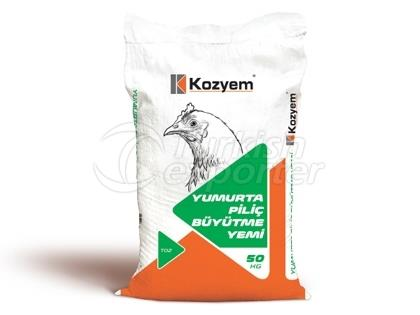 Layer Chicken Grower Feed