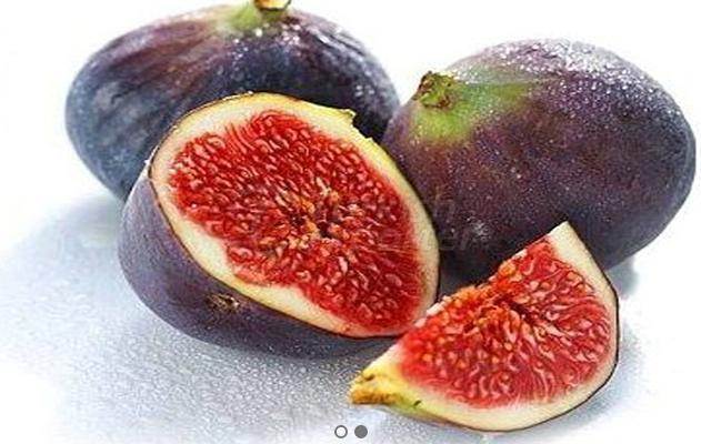 Frozen Fig