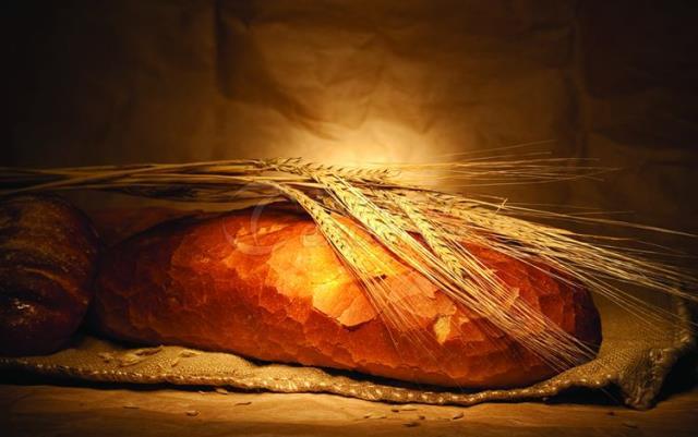 Sardunya Bread Flour