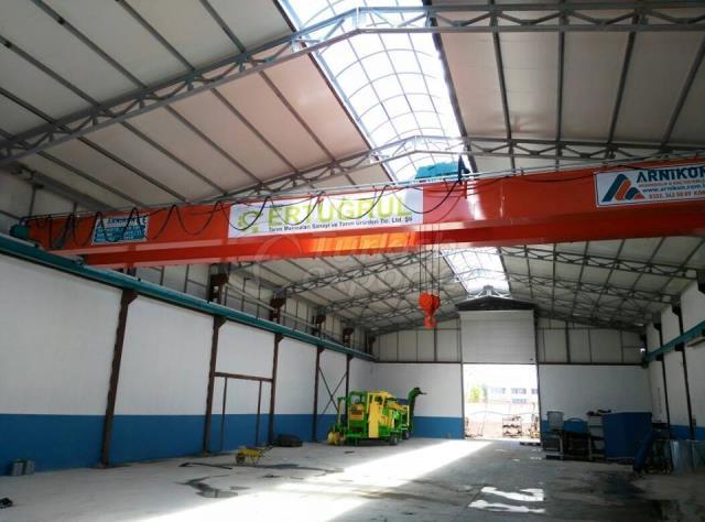 electrical crane