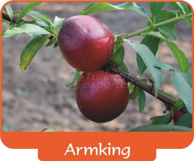 Nectarine Armking