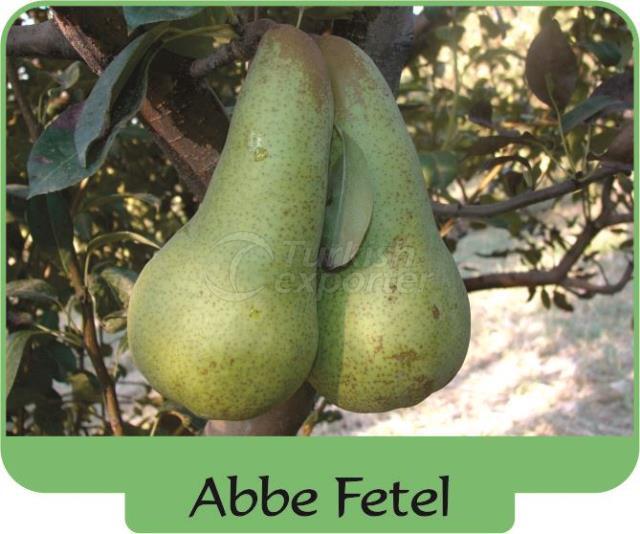 Pear Abbe Fetel