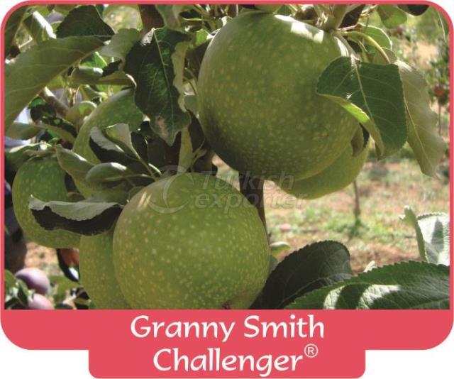 Apple Granny Smith Challenger