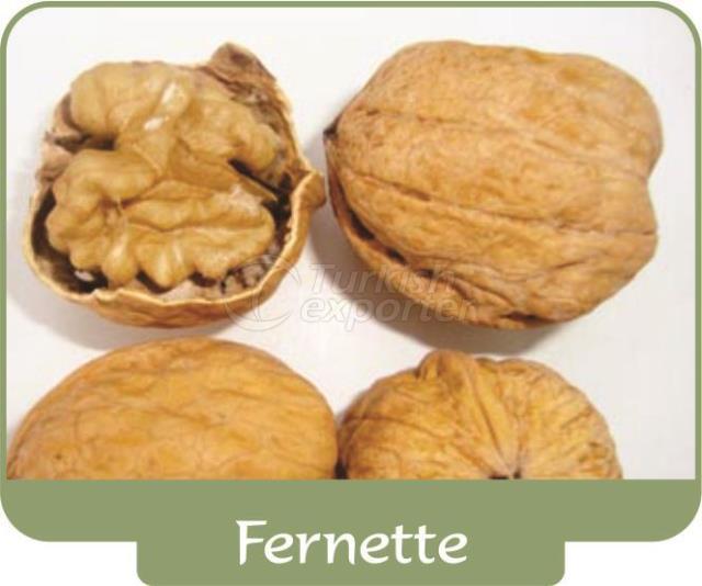 Walnut Fernette