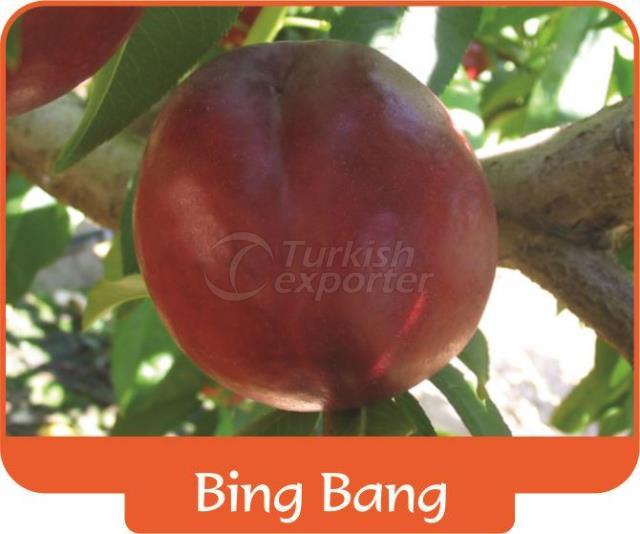Nectarine Bing Bang