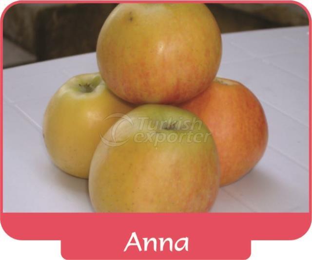 Apple Anna