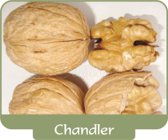 Walnut Chandler