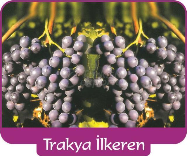 Grape Trakya İlkeren