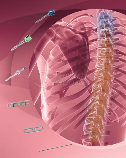 Artrofiks Spinal System