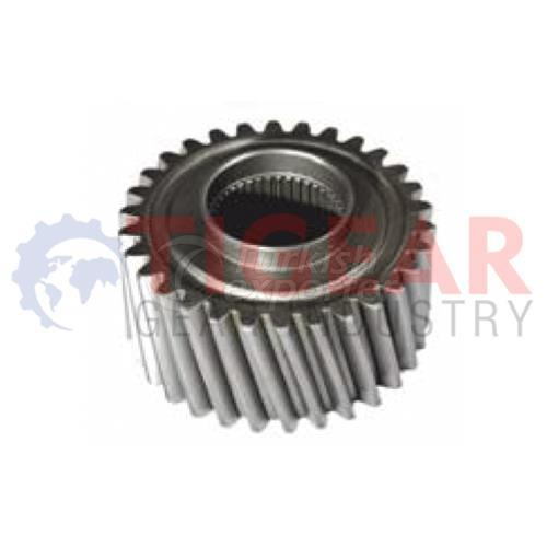 Differential Gear 100.03.1011