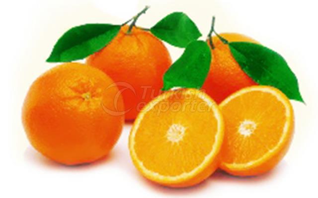 Orange Jaffa