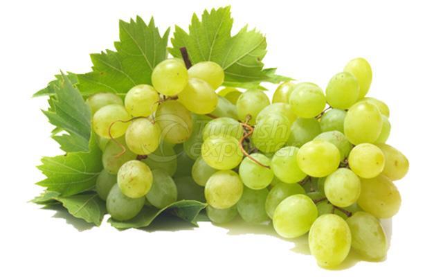 Grape Sultani