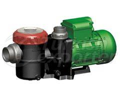 Swimming Pool Pumps(HAMSİ SERİES ¼)