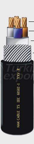 Low Voltage Cables YXV-R