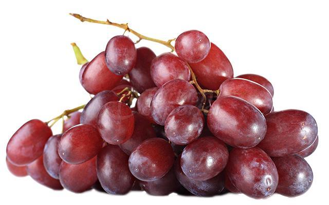 Grape Cardinal