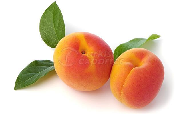 Apricot Mogador