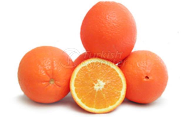 Orange Navelina