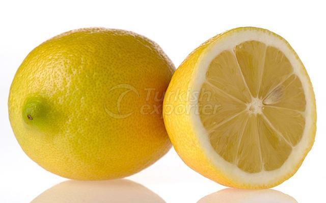 Lemon Italian Mammal