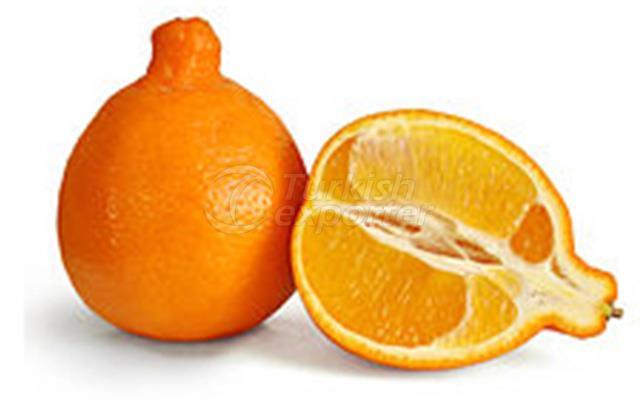Mandarin Minneloa Tangelo