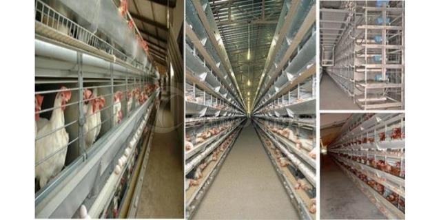 MANCHONG INTEGRATED FARM Ltd