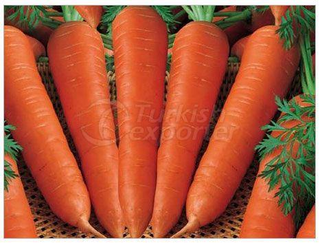 Dried Carrot