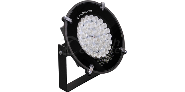 YLP50 Floodlight
