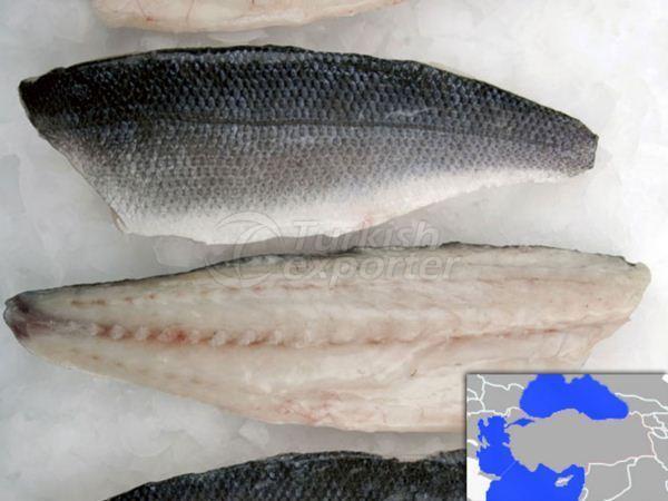 Fillet Sea Bass