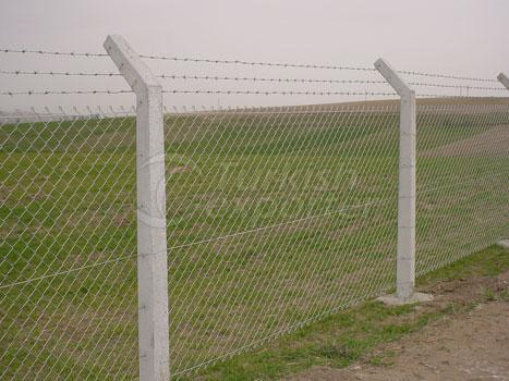Cage Wiire Netting With Concrete Column