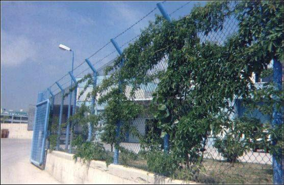 Cage Wiire Netting With Pipe Column
