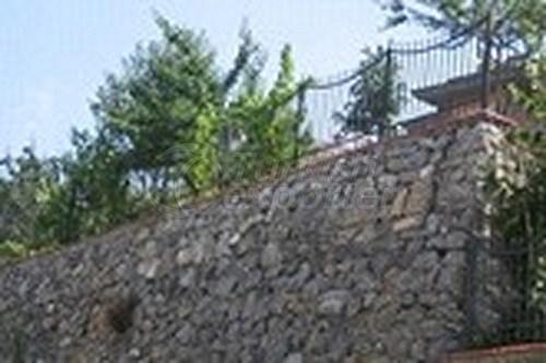 Wrought Iron Hedge