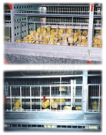 Poultry Farms Broiler Facility