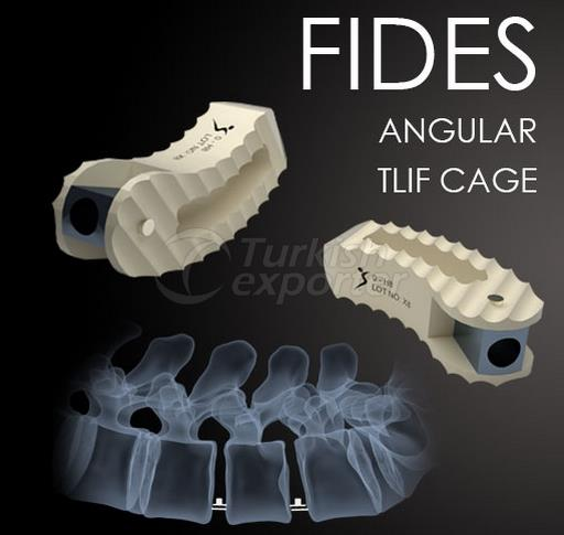 Angular Tlif Cage Fides