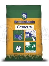 CAMEL 3M