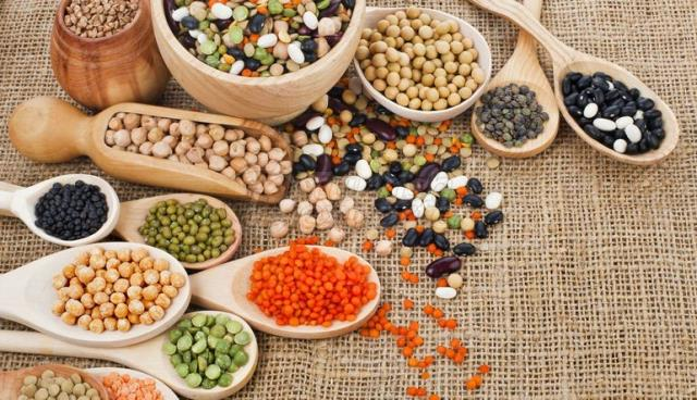 Beans-Pulses and Grains