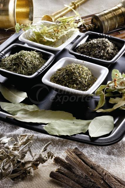 Oil Seeds-Spices and Herbes