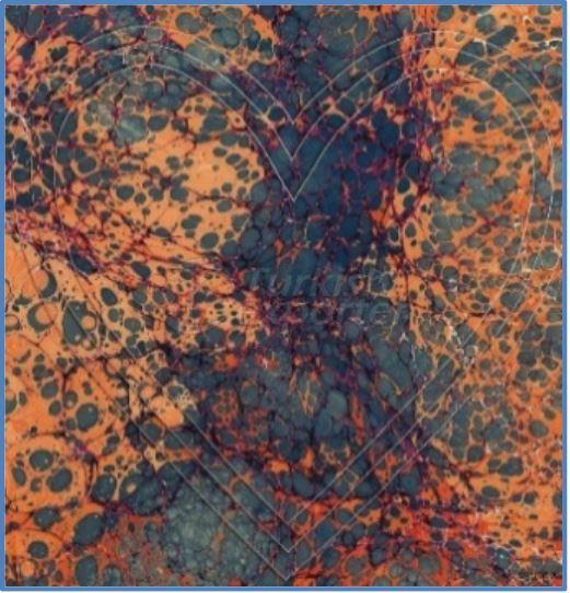 Sateen-Silk Scarves 010